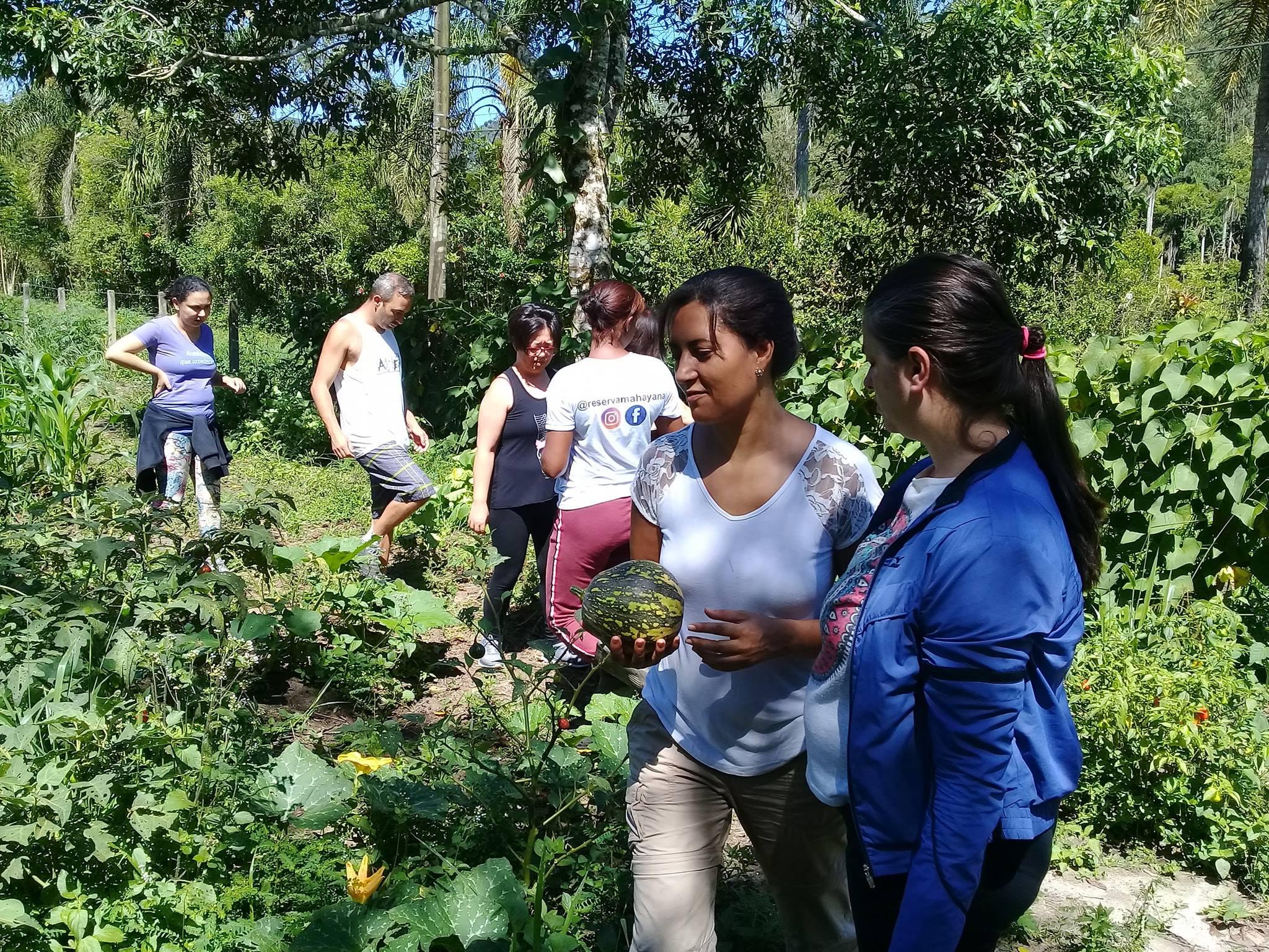 2º Curso de Jardinagem e Horta Orgânica